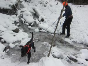 edgar mill trail icy