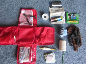 Dog first aid kit ( incl. vet wrap,pliers,superglue, pencil, duct tape,bandages,pantyhose for muzzle,antiseptics)