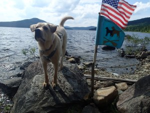Proudly waving the US and Paddle Pups flags!
