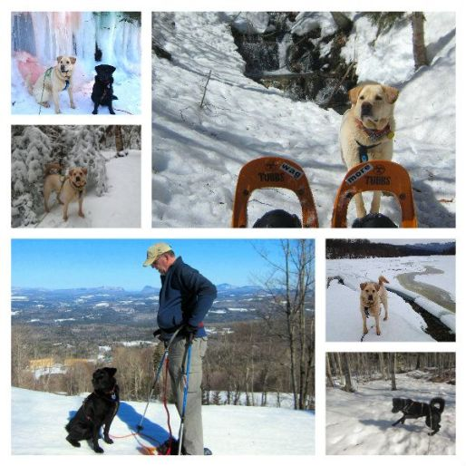 spring snow hikes 2015 collage