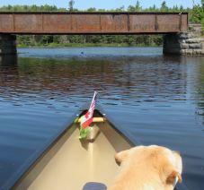 adk paddle 11