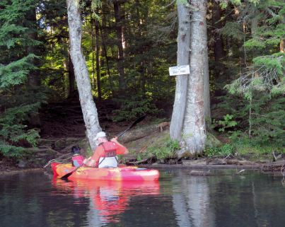 adk paddle 37