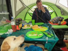 june island pond camping 50