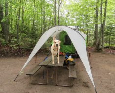 june island pond camping 55