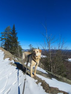 ADK 2017 March 16