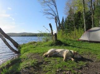 green river may camping 54