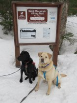 maine snowshoe trip 36