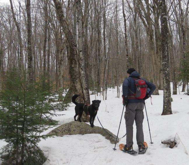 maine snowshoe trip 40
