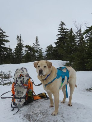maine snowshoe trip 43