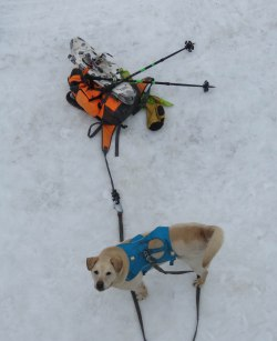 maine snowshoe trip 51