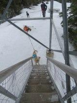 maine snowshoe trip 55