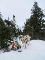 maine snowshoe trip 56