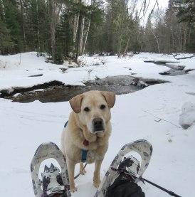 maine snowshoe trip 77