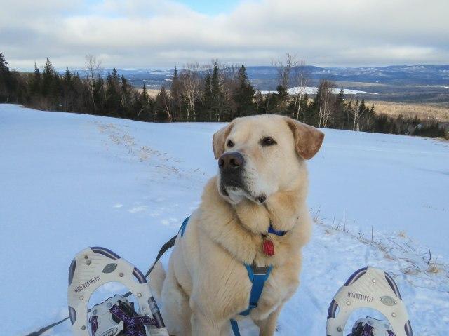 maine snowshoe trip 92