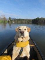 canoe 4 2 May WR 19
