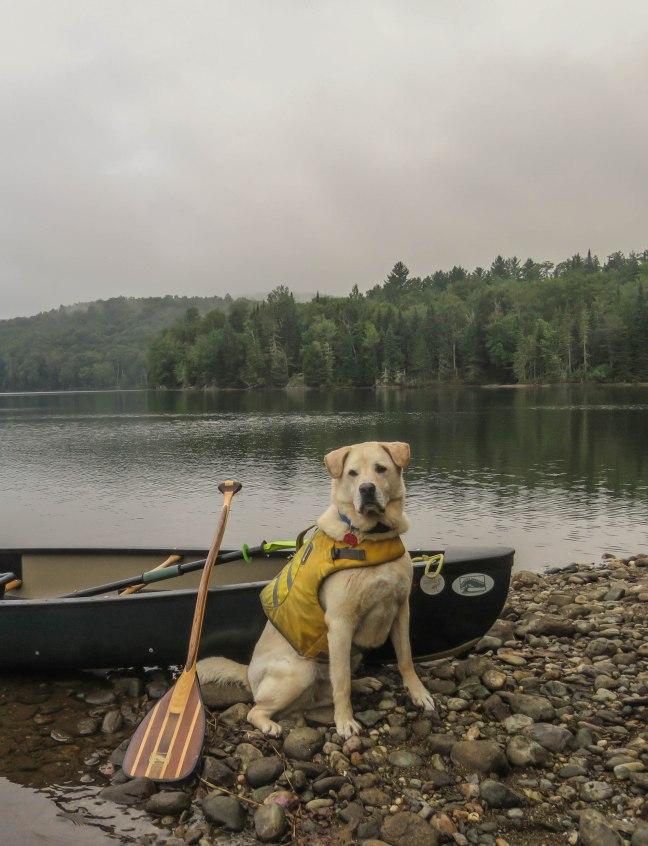 canoe87 27august grrsp 19