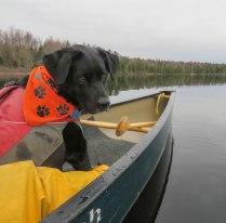 paddle4 1May wolcott 27