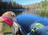 paddle6 6may GRRSP 42