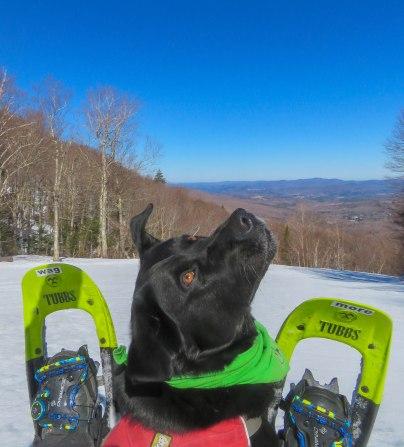 tubbs134 17apr smuggs ski area 15