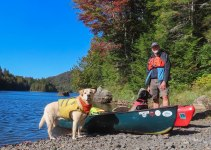 ADK 2019 paddle trip 102