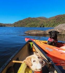 ADK 2019 paddle trip 95