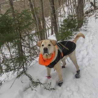 snowhike tplo mil trail 2